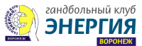 logo handball